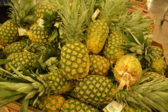 Pineapple beuty Royalty Free Stock Photo