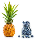 Pineapple and blueberries Royalty Free Stock Photos