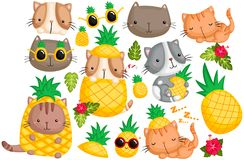 Pineapple Cat Vector set. A cat with pineapple theme and many decoration such as flower and leaf royalty free illustration