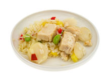 Pineapple Chicken With Water Chestnuts On Plate Side View Royalty Free Stock Image