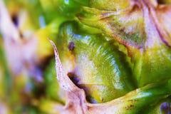 Pineapple close-up Stock Photos
