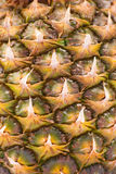 Pineapple close up Royalty Free Stock Photography