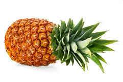 Pineapple close-up isolated on a white Stock Image