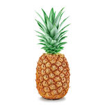 Pineapple close-up isolated on a white Royalty Free Stock Photos