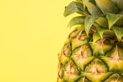 Pineapple close up Royalty Free Stock Images
