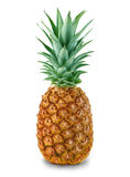 Pineapple close-up  Royalty Free Stock Images