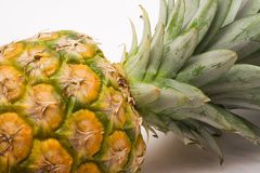 Pineapple (Close View) Royalty Free Stock Image