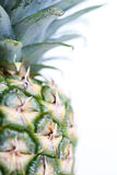 Pineapple closeup Royalty Free Stock Image