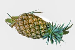 Pineapple closeup detail fruit art Royalty Free Stock Photos