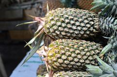 Pineapple Closeup Royalty Free Stock Image