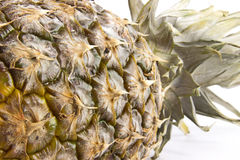 Pineapple closeup Royalty Free Stock Photos