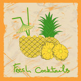 Pineapple cocktail illustration Stock Photos