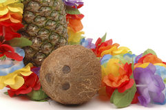 Pineapple and Coconut. Draped with a colorful lei Royalty Free Stock Photography