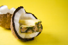 PINEAPPLE AND COCONUT Royalty Free Stock Photography