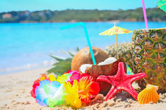 Pineapple and coconuts by the shore Royalty Free Stock Images