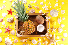 Pineapple and coconuts Stock Image