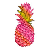 Pineapple creative trendy art poster. Stock Photography