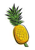 Pineapple design Stock Photography