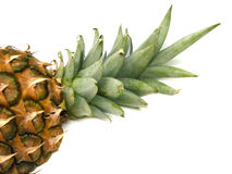 Pineapple detail Stock Images