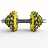 Pineapple_dumbbells Photographie stock libre de droits