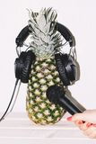 Pineapple in earphones hand with microphone royalty free stock image