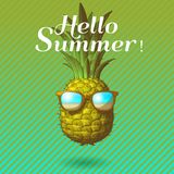 Pineapple engraving drawing illustration isolated on green BG royalty free illustration