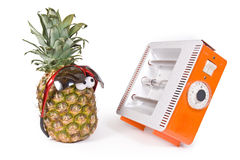 Pineapple and Facial solarium Royalty Free Stock Photography