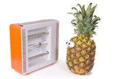 Pineapple and Facial solarium Stock Image