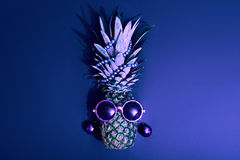 Pineapple Fashion Hipster Party Mood. Art Gallery Stock Images