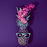 Pineapple Fashion Hipster Party Mood. Art Gallery royalty free stock images