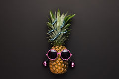 Pineapple Fashion Hipster Party Mood. Art Gallery Stock Photography