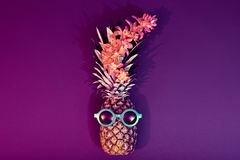 Pineapple Fashion Hipster Party Mood. Art Gallery Royalty Free Stock Image