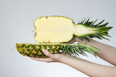 Pineapple in female hands Royalty Free Stock Photos
