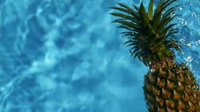 Pineapple Floating In blue Water In Swimming Pool. Healthy Raw Organic Food. Juicy Fruit. Exotic tropical background stock video footage