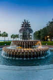 Pineapple Fountain Stock Photos