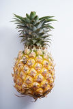 Pineapple. fresh pineapple Royalty Free Stock Image