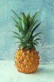 Pineapple Stock Photos
