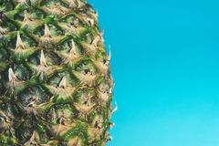 Pineapple Fruit royalty free stock photography
