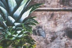 Pineapple Fruit Royalty Free Stock Image