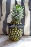 Pineapple with sunglasses in front of beach cushion royalty free stock photo