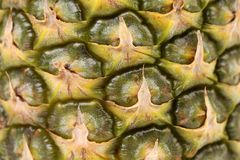 Pineapple fruit close up. Royalty Free Stock Photos