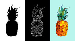 Pineapple fruit color and silhouette design set Royalty Free Stock Photos