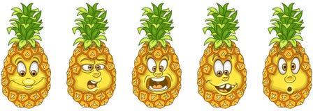 Pineapple. Fruit Food concept stock photos