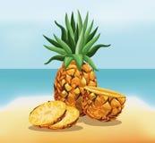 Pineapple fruit fresh harvest - beach background. Vector illustration eps 10 Stock Image