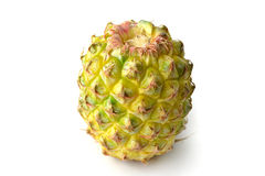 Pineapple fruit Royalty Free Stock Images