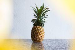 Pineapple Fruit On Gray Table royalty free stock image