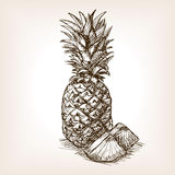 Pineapple fruit hand drawn sketch style vector Stock Photo