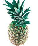 Pineapple fruit for healthy life stock photo