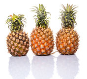 Pineapple Fruit II. Pineapple fruit over white background Stock Images