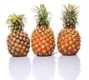 Pineapple Fruit II Stock Images